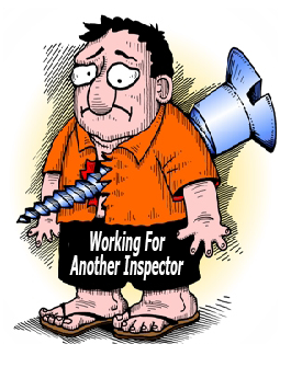 Another Inspector