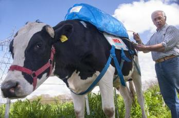 cow-fart-backpack_1